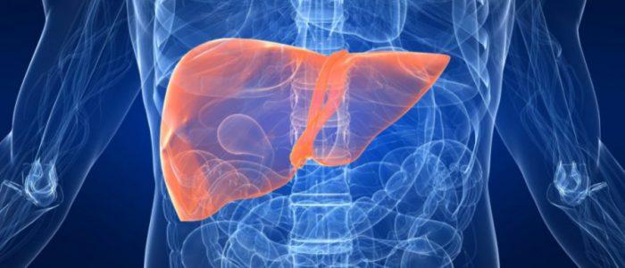 Влияние заболеваний печени на артериальное давление и проявление портальной гипертонии. Артериальная гипертензия и болезни печени: в поисках компромисса Может ли повышаться давление из за печени